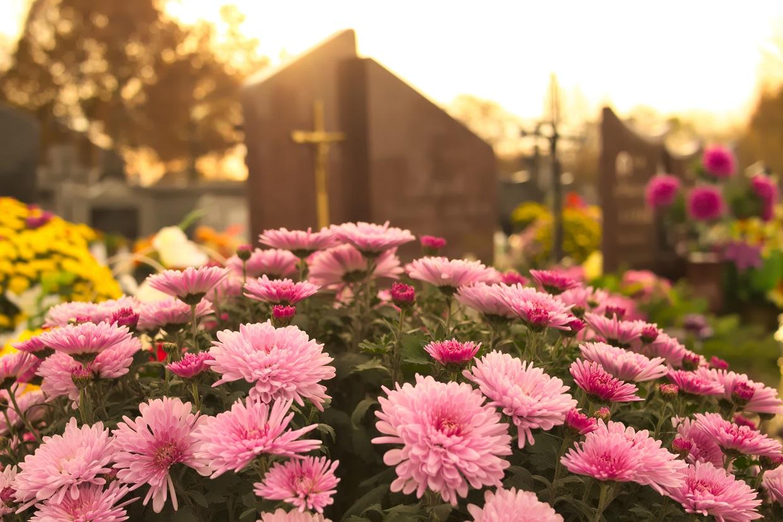 Friedhof Blumen Gärtnerei Kirchblüte